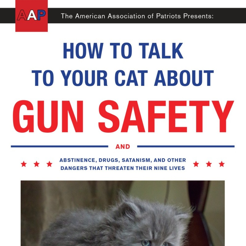 How To Talk To Your Cat About Gun Safety And Abstinence Drugs