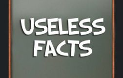 Useless Facts About the Human Body